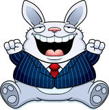 Cartoon Fat Rabbit Suit Royalty Free Stock Photography