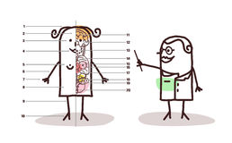 Cartoon female anatomy lesson Stock Photography