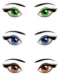 Cartoon female eyes Stock Image