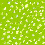 Cartoon Field background with flowers. Summer green field illustration with flowers. Floral Season pattern design. Cute spring vector abstract illustration Stock Photos