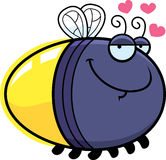 Cartoon Firefly in Love. A cartoon illustration of a firefly with an in love expression Stock Photos