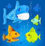 Cartoon fish. Royalty Free Stock Images