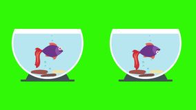 Cartoon Fish Bowls With Dead Fish And Live Fish stock video footage