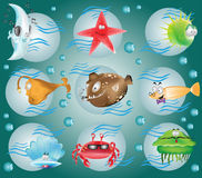 Cartoon fish character Stock Photography