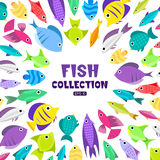 Cartoon fish collection background. Fish collection. Cartoon style. Illustration of different fish Royalty Free Stock Photos