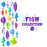 Cartoon fish collection background. Fish collection. Cartoon style. Illustration of different fish Royalty Free Stock Image