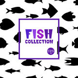 Cartoon fish collection background. Fish collection. Cartoon style. Illustration of different fish Stock Photos