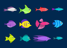 Cartoon fish collection background. Fish collection. Cartoon style. Illustration of twelve different fish Royalty Free Stock Image