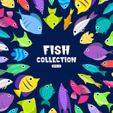 Cartoon fish collection background. Fish collection. Cartoon style. Illustration of twelve different fish Stock Photo
