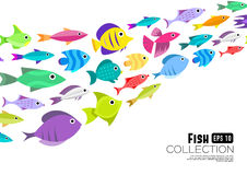 Cartoon fish collection background. Fish collection. Cartoon style. Illustration of twelve different fish Royalty Free Stock Photos