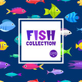 Cartoon fish collection background. Fish collection. Cartoon style. Illustration of twelve different fish Royalty Free Stock Images