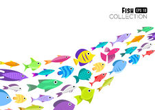 Cartoon fish collection background. Fish collection. Cartoon style. Illustration of twelve different fish Stock Photography