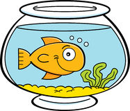 Cartoon fish in a fish bowl Stock Photography