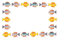 Cartoon fish frame. Illustration of cartoon fish frame isolated on white background with copy space Stock Image