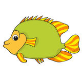 Cartoon fish sea life. Isolated Stock Image