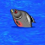 Cartoon Fish Swimming in Water Background. Cartoon Fish Swimming in Blue Water Background Stock Images