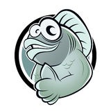 Cartoon fish with thumb up. Illustration of cartoon fish in button with thumb up; isolated on white background Stock Image