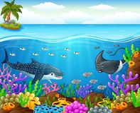 Cartoon fish under the sea Royalty Free Stock Photos