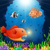 Cartoon fish under the sea Royalty Free Stock Images
