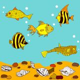 Cartoon fish in water with sand, stones and shells. Vector illustration Stock Photos