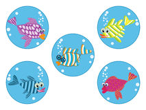 Cartoon fishes Stock Image