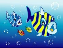 Cartoon Fishes. A set of funny cartoon fishes Stock Photos
