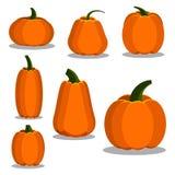 Cartoon flat style colorful pumpkin icons set royalty free illustration