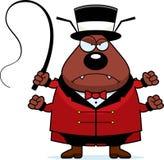 Cartoon Flea Circus Mad Royalty Free Stock Photos