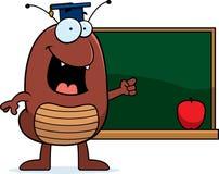 Cartoon Flea Teaching. A cartoon illustration of a flea teaching Royalty Free Stock Photography