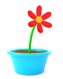 Cartoon flower. In pot isolated on white. Made in 3d Stock Photography