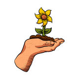 Cartoon flower growing in palm of hand Royalty Free Stock Photos