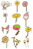 Cartoon flower icon. Vector drawing Stock Photography