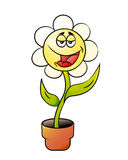 Cartoon Flower in a pot Stock Images