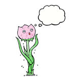 Cartoon flower with thought bubble Royalty Free Stock Photo