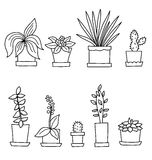 Cartoon flowers in pots isolated on white backround. Vector illustration of flower in line style royalty free illustration