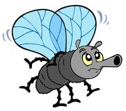 Cartoon fly Stock Photos