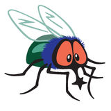 Cartoon fly insect Stock Image