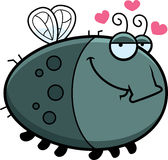 Cartoon Fly in Love Royalty Free Stock Photos