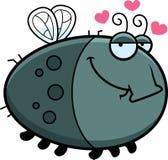 Cartoon Fly in Love Royalty Free Stock Photos