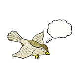 Cartoon flying bird with thought bubble Royalty Free Stock Photo
