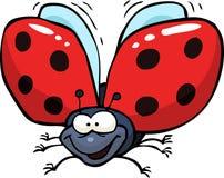 Cartoon flying ladybug Royalty Free Stock Photography
