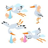 Cartoon flying storks and stork birds carrying baby vector set Stock Photo