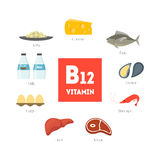 Cartoon Food with Vitamin B12 Infographics. Vector. Cartoon Food with Vitamin B12 Infographics Concept Healthy Nutrition or Diet Flat Design Style. Vector Stock Photos