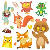 Cartoon forest animals characters set.Vector illustration. Big set of cartoon woodland animals illustration. Squirrel, owl, bunny rabbit,frog, chipmunk, fox vector illustration