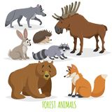 Cartoon forest animals set. Wolf, hedgehog, moose, hare, raccoon, bear and fox. Funny comic creature collection. royalty free illustration