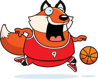 Cartoon Fox Basketball Stock Photo