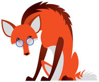 Cartoon fox with glasses Stock Images