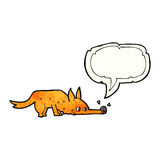 Cartoon fox sniffing floor with speech bubble Stock Image