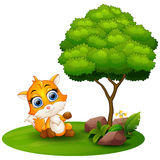 Cartoon fox under a tree on a white background Royalty Free Stock Images