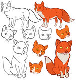 Cartoon foxes Stock Images